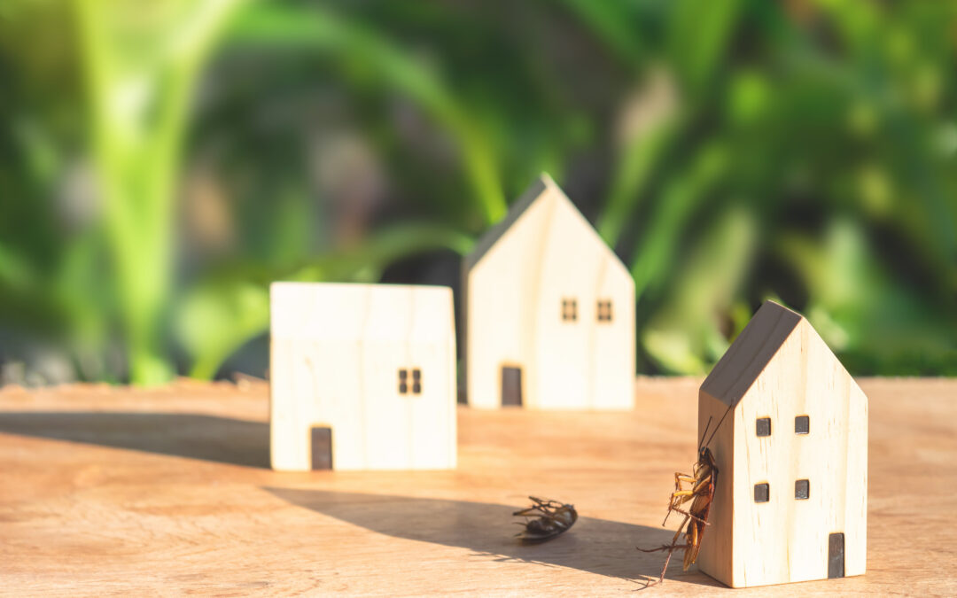 Is Residential Pest Control Worth The Money?